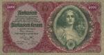 5000 Austrijos kronų.