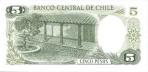 5 Čilės pesai.