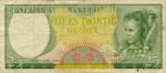 25 Surinamo guldenai.